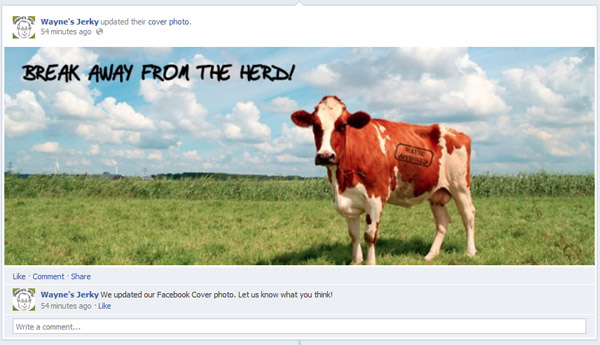 facebook cover status highlight