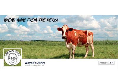 Wayne's Jerky Facebook Branding