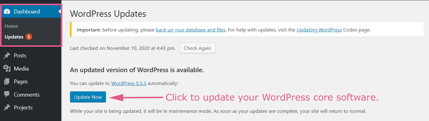 Installing WordPress Core Updates
