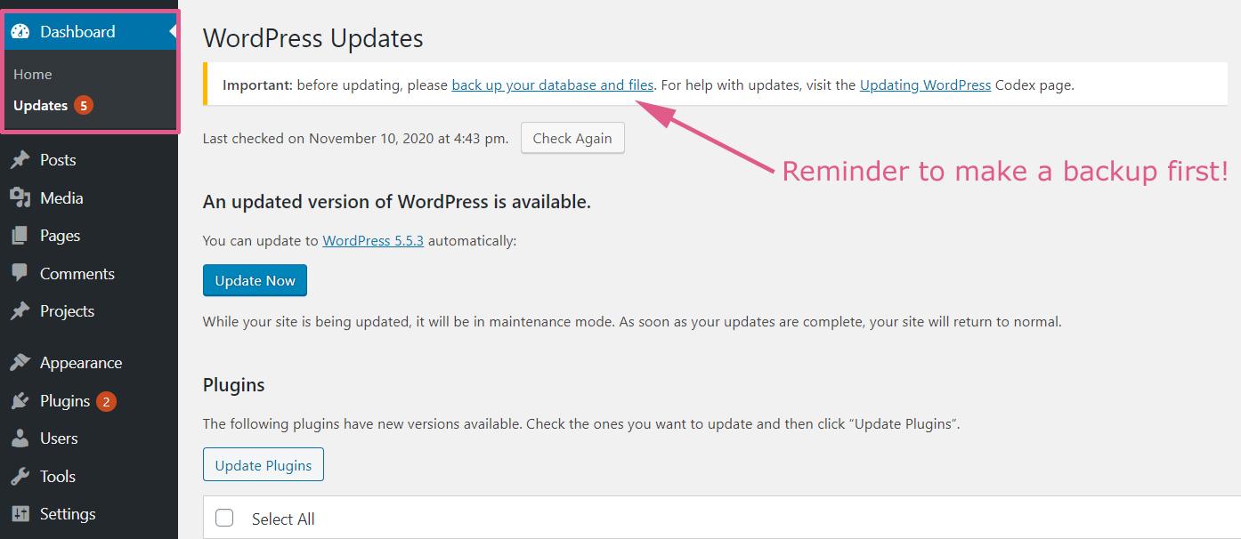Installing WordPress Updates
