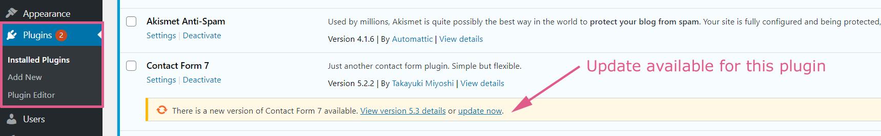 Installing WordPress Plugin Updates